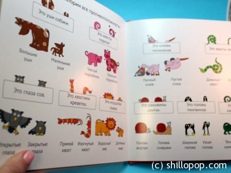 МИФ учим животных и противоположности 5