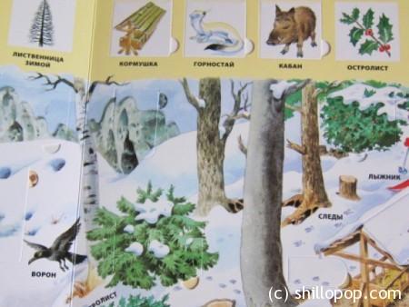 100окошек в лесу 3