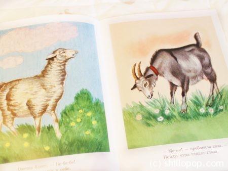 первые книги о животных развитие речи звукоподражание 5